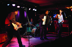 Psycho Zydeco - Live at the Basement